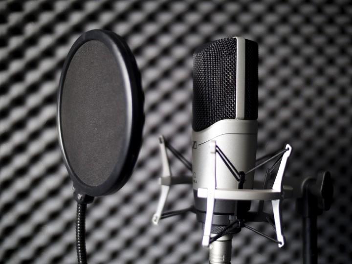 Cutter arbeiten bei der Vertonung am liebsten mit Großmembran Mikrofonen